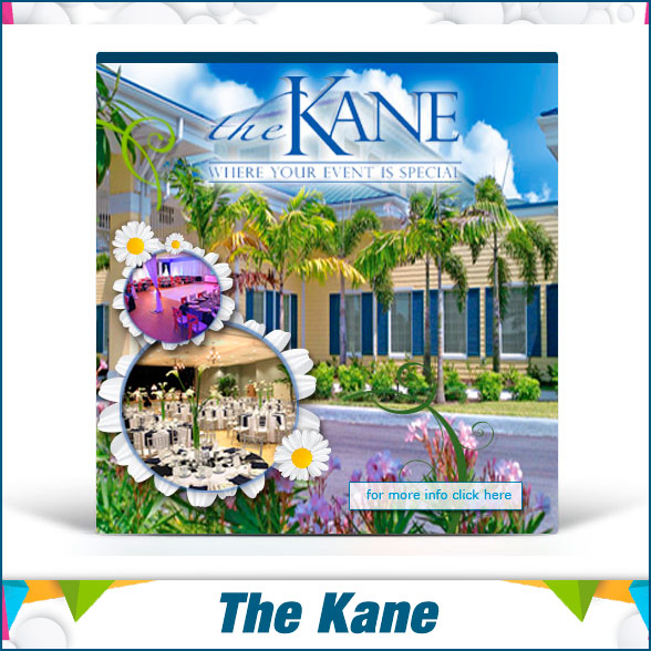 portada-portafolio-Creative-Designt–Display-Ads-the-kane