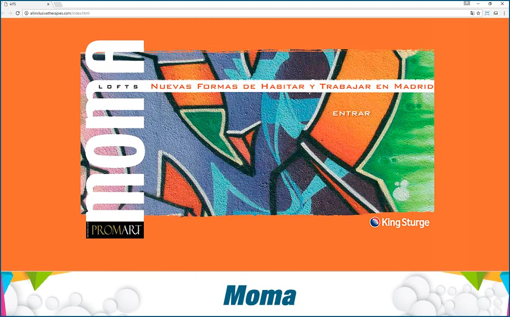 Promotional Sites Moma