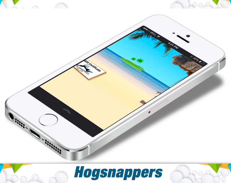 before_after_mobiles-hogsnappers-1