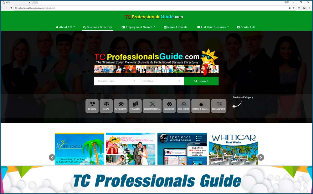 web-TC-Professionals-Guide